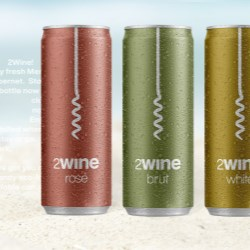 Best. Summer. Ever. with 2Wine cans